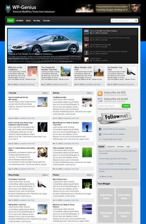 genius-wordpress-theme